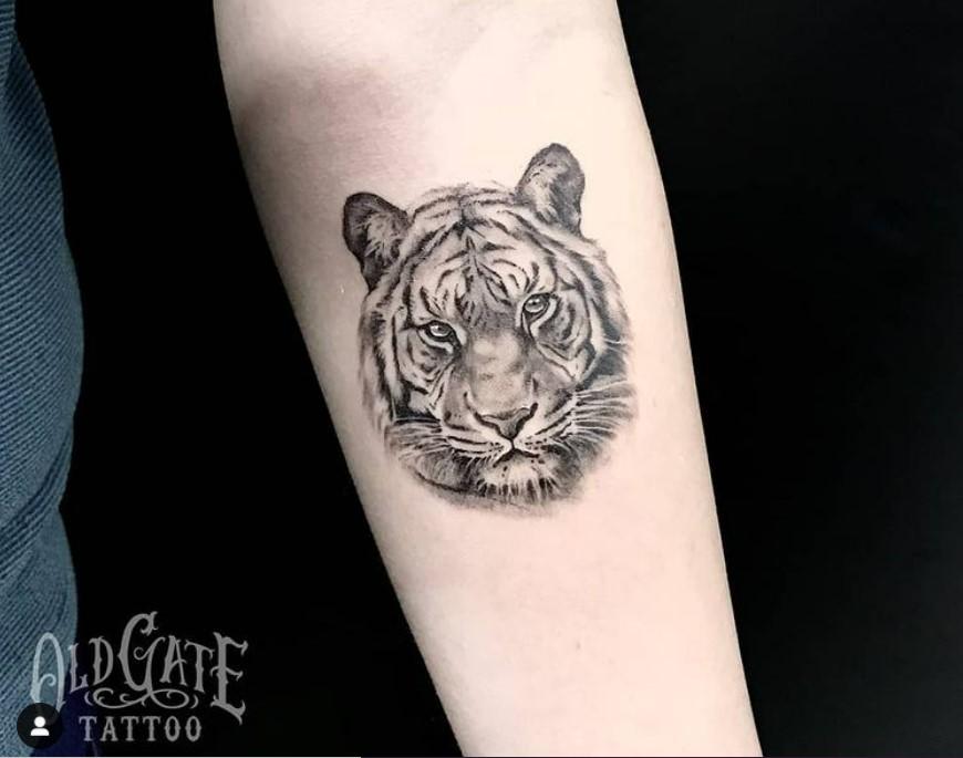 tatuaggio uomo disegno volto tigre
